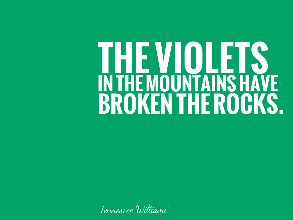 THE VIOLETS IN THE MOUNTAINS HAVE BROKEN THE ROCKS.   alt=