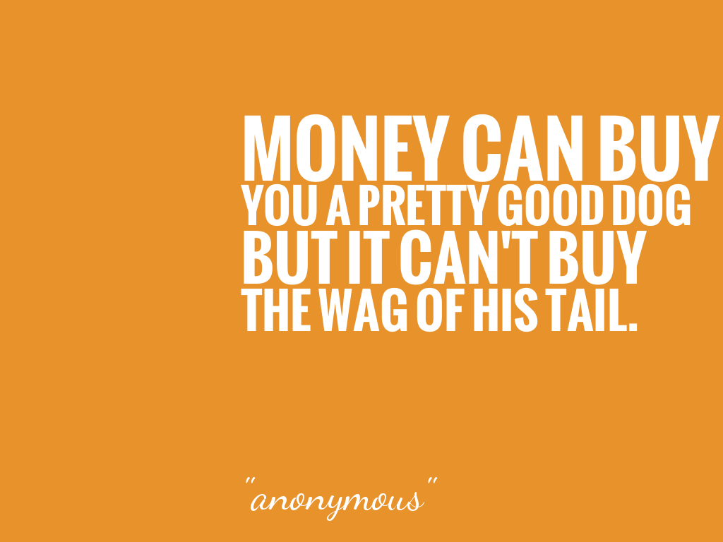 MONEY CAN BUY YOU A PRETTY GOOD DOG BUT IT CAN'T BUY THE WAG OF HIS TAIL.  alt=